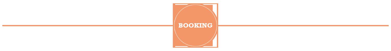 booking_stoerer